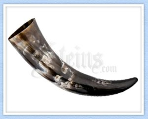 Plain Viking Drinking Horn